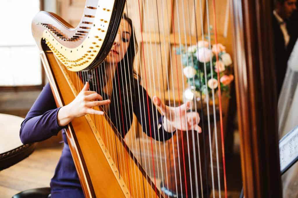 Harp at wedding hampshire